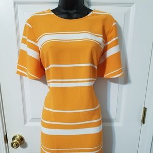 Ann Taylor gold & white dress